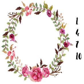 Camellia Blooms Milestone Monthly Baby Blanket