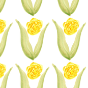 Yellow watercolor flower || White Green Leaf Leaves Plant Bulb spring