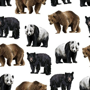 Bears Everywhere - Smaller Scale on White