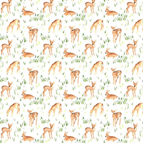 woodland fawns on greenery
