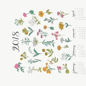 Rr2018_wildflower_illustration_shop_thumb