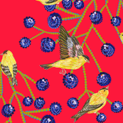 Goldfinches & grapes (red)