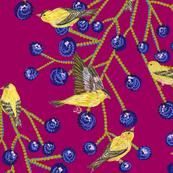 Goldfinches & grapes (darkmagenta)