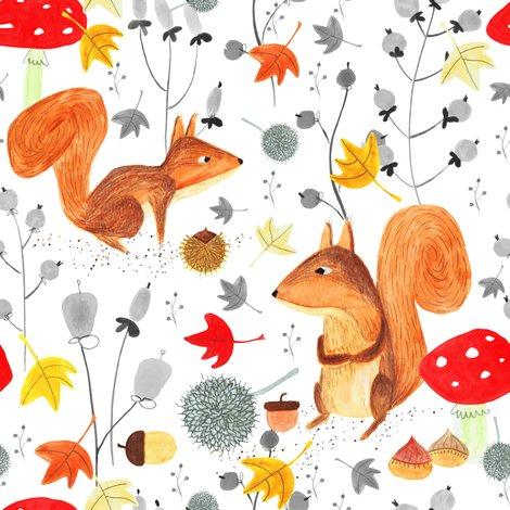Rsquirrels_shop_preview