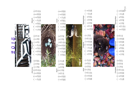 2018TeaTowel-Blythe_Ayne fabric by blythe_ayne's_fabric_designs on Spoonflower - custom fabric