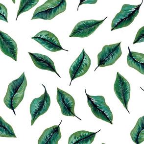 greenery_