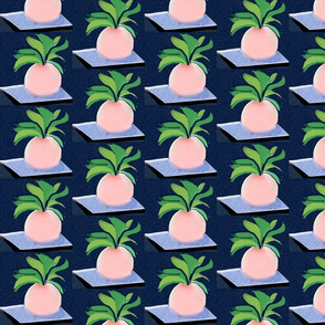 magic peach carpet ride navy blue and pink