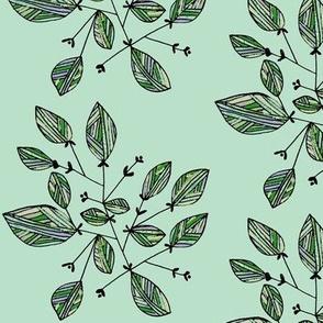 Striped leaves/mint