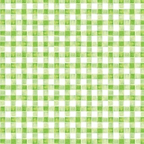 Watercolor Green Gingham Coordinate