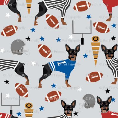 Miniature Doberman Pinscher dog football sports fabric grey