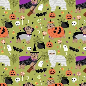 Yorkshire Terrier yorkie halloween costumes cute dog fabric fall autumn green