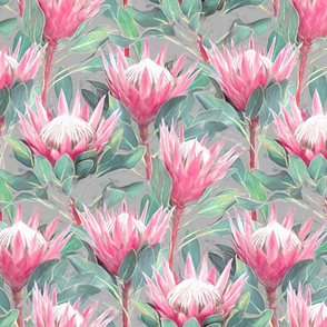 Painted King Proteas - pink on light grey MEDIUM