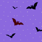 Bats in a Purple Night