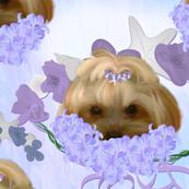 Yorkie -  Lilac Garland