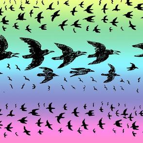 caw_caw_rainbow_pastel