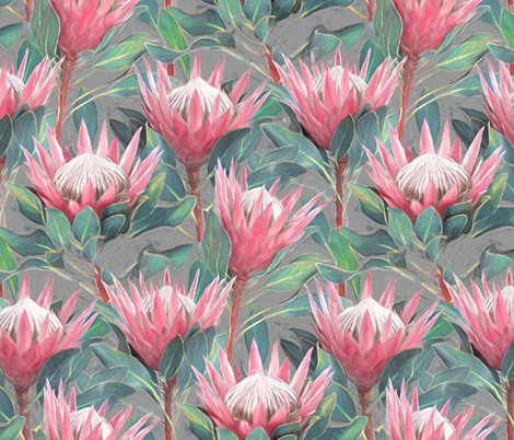 Painted King Proteas - pink on mid grey MEDIUM fabric by micklyn on Spoonflower - custom fabric