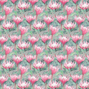 Painted King Proteas - pink on light grey SMALL