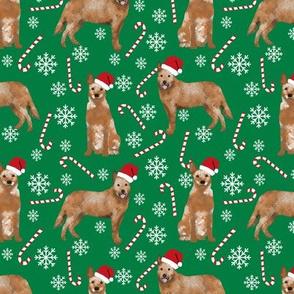 Australian Cattle Dog red heeler dog breed christmas peppermint sticks candy canes fabric green