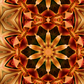 Mandala of Orange Ribbons