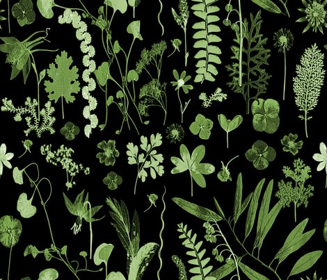 Collectors_garden_green_on_black_shop_preview