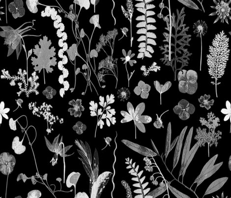 Collectors_garden_grey_on_black_shop_preview