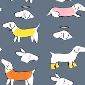 Autumnal Sausage Dogs