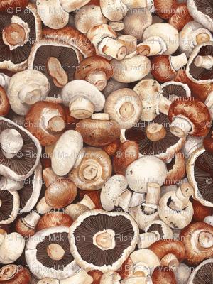 Brown Cap Mushrooms