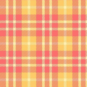 #SAGE Beach Colors - Picnic Plaid