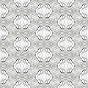 Hexagon Frost