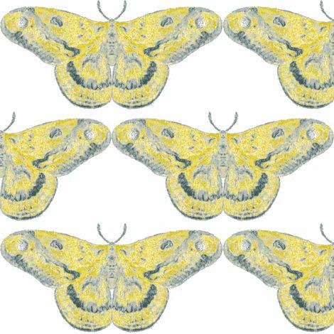Rrrrrrrrrrrwarm_blue_moth_shop_preview