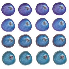 Blueberries: Color-by-Fruit