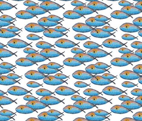 Rrrfish_1_shop_preview