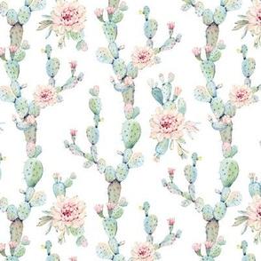 Watercolor Pastel Cactus // White