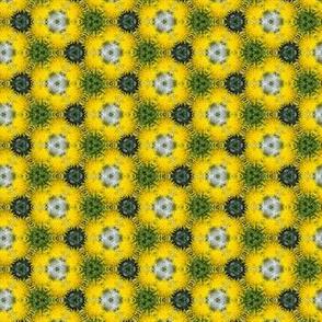 Dandelion Yellow Flower Floral Pattern Print