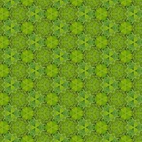 Green Botanical Photo Pattern Print