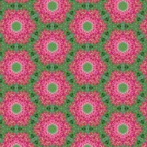 Pink Yarrow Floral Photo Pattern  Wreaths