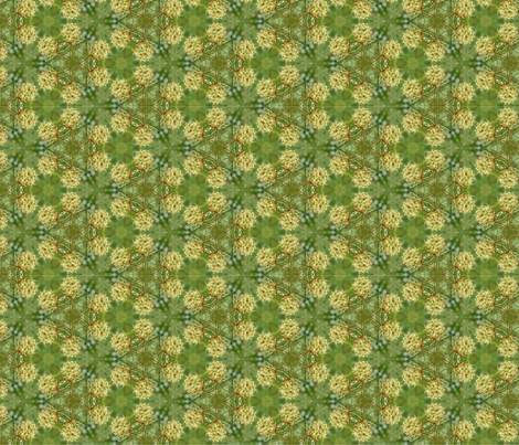 Queen Anne's Lace White and Green Floral Photo Pattern fabric by plantedit on Spoonflower - custom fabric