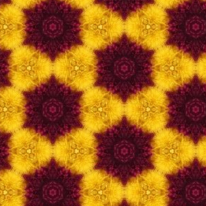 Floral Photo Pattern- Burgundy and Gold