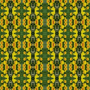 Yellow Flowers Photo Pattern