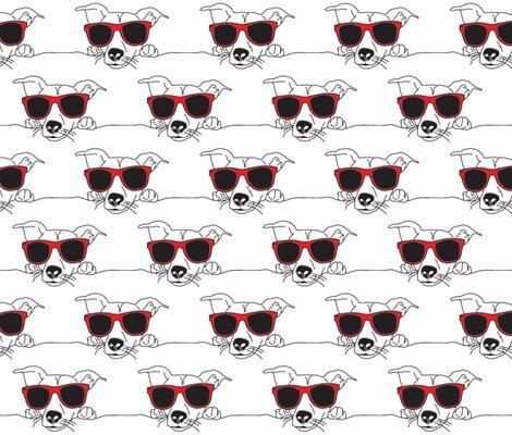 Rdogglasses-01_shop_preview