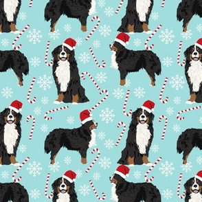 Bernese Mountain Dog peppermint stick candy canes winter snowflakes dog fabric light blue