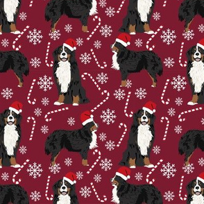 Bernese Mountain Dog peppermint stick candy canes winter snowflakes dog fabric ruby