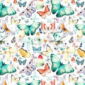 """4"""" Butterfly Dreams"""