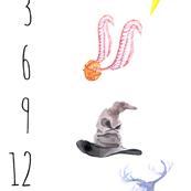 Potter Symbols Baby Milestone Blanket