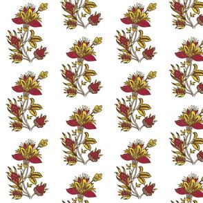 indiandandelion-01-01