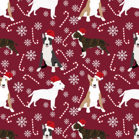 Rbull_terrier_mixed_peppermint_3_shop_preview