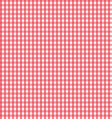 gingham bold coral