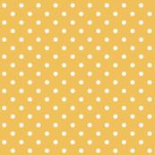 mimosa polka dots