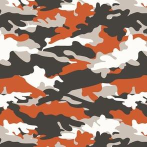 C1 - camouflage