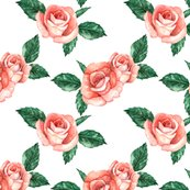 Rred_garden_roses_shop_thumb